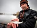 Feederfishing.tv silver fish norfin