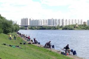 Кубок Москвы 2014 по фидерной ловле 28-29 июня