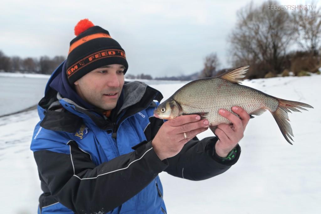 feederfishing.tv лещ 1