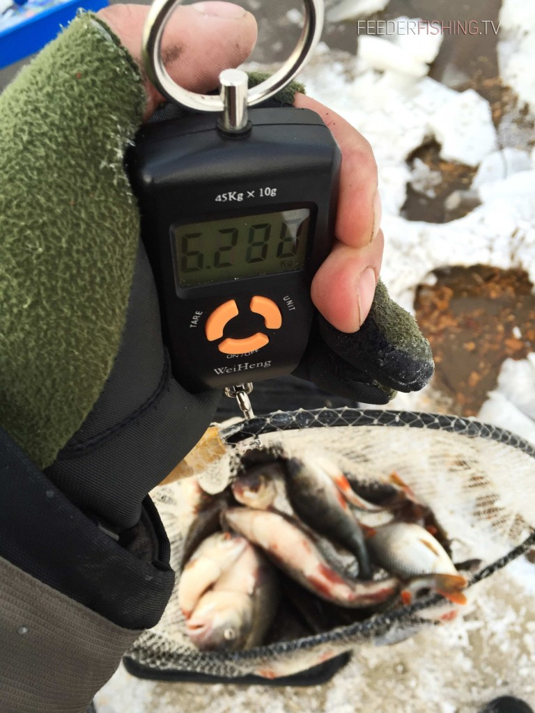 Feederfishing.tv-winter-feeder