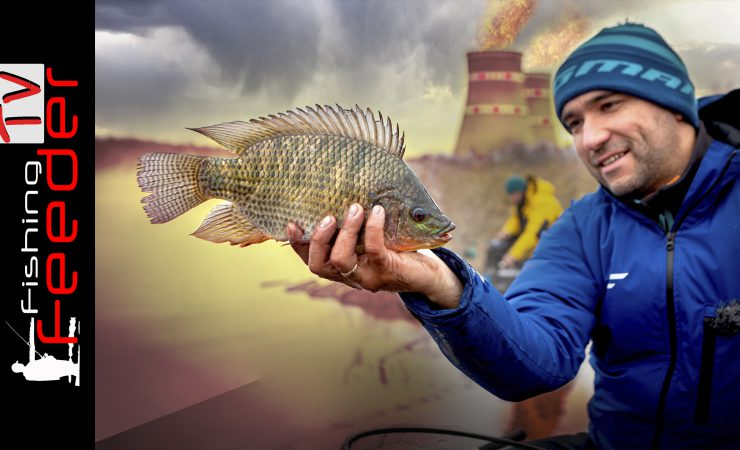 рыбалка озере 2020
